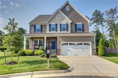 Ashland Single Family Home For Sale: 13701 Winston Trail Circle