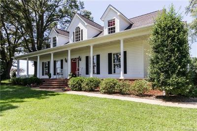 Chesterfield Single Family Home For Sale: 21314 Double Branch Road
