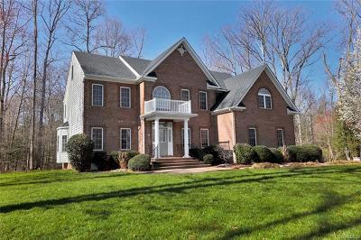 Chesterfield Single Family Home For Sale: 8206 Seaview Drive