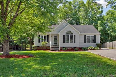 Chesterfield Single Family Home For Sale: 11319 Bailey Woods Drive