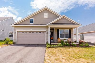 New Kent Single Family Home For Sale: 7772 Robert Dinwiddie Terrace