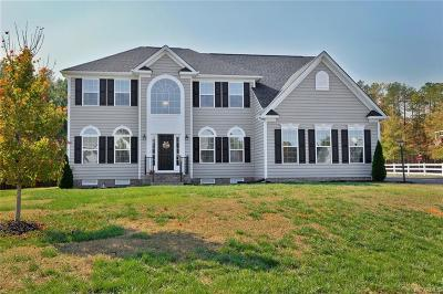 Chesterfield County Single Family Home For Sale: 14500 Beachmere Drive