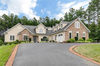 Glen Allen Single Family Home For Sale: 14539 Bud Lane