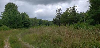 Powhatan Residential Lots & Land For Sale: 2341 Mountain View Road