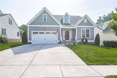 Chesterfield Single Family Home For Sale: 9527 Ashleyville Turn
