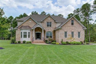 Hanover County Single Family Home For Sale: 10319 Scots Landing Road