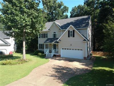 Glen Allen Single Family Home For Sale: 10972 Elmont Woods Drive