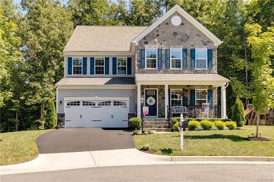 Hanover County Single Family Home For Sale: 9939 Orchard Meadow Road