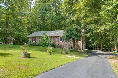 Midlothian Single Family Home For Sale: 9600 Old Chestnut Drive