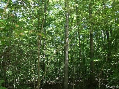 Powhatan Residential Lots & Land For Sale: 4320 Spoonbill Court