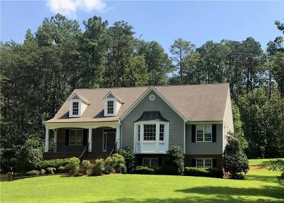 Hanover County Single Family Home For Sale: 17493 Dogwood Trail Road