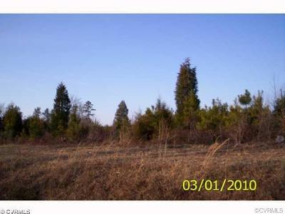 Sussex County Land For Sale: Lot 1 Courthouse Road