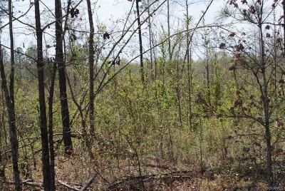 Dinwiddie County Residential Lots & Land For Sale: 24518 South Shippings Road