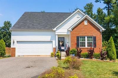 Henrico Single Family Home For Sale: 1267 North James Estates Drive