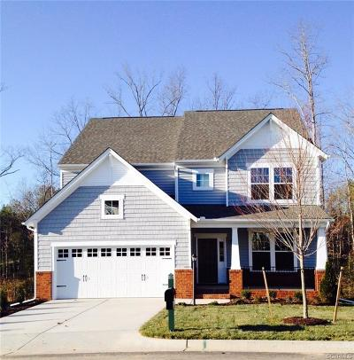 Chesterfield County Single Family Home For Sale: 18407 Twin Falls Lane