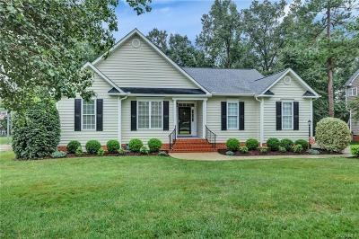Henrico County Single Family Home For Sale: 5009 Topping Lane