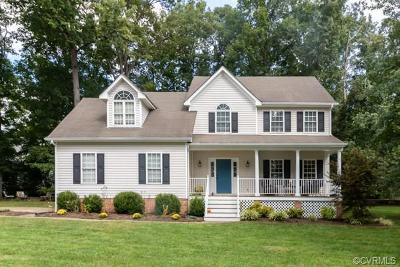 Chesterfield County Single Family Home For Sale: 16219 Hampton Summit Drive