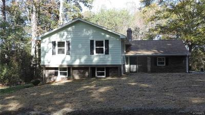 Chesterfield Single Family Home For Sale: 16800 Sandy Ford Road