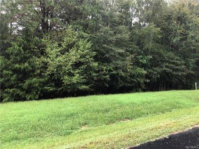 Hanover County Residential Lots & Land For Sale: 19126 Irby Spring Road