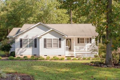 Dinwiddie Single Family Home For Sale: 13980 Rocky Raccoon Road
