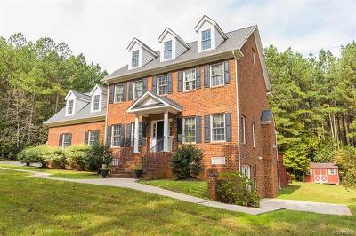 Hanover County Single Family Home For Sale: 17139 Katy Lane
