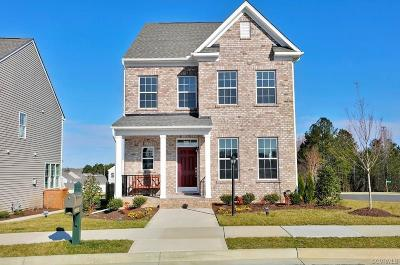 Chesterfield County Single Family Home For Sale: 16600 Gossamer Drive