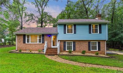 Henrico County Single Family Home For Sale: 1204 Hatteras Road