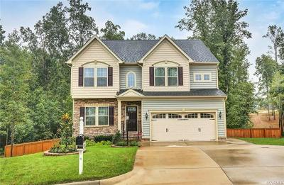 Chesterfield County Single Family Home For Sale: 5249 Goldburn Drive