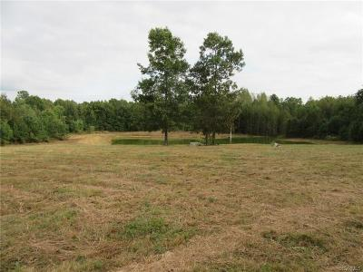 Dinwiddie County Residential Lots & Land For Sale: 12310 Sapony Church Road