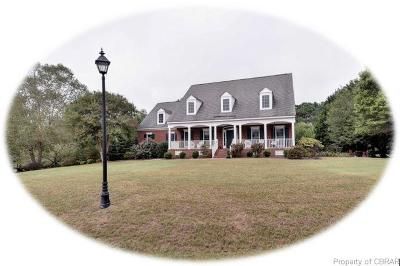 Williamsburg Single Family Home For Sale: 110 Tayside