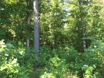 Hanover County Residential Lots & Land For Sale: 13445 Palmer's Way