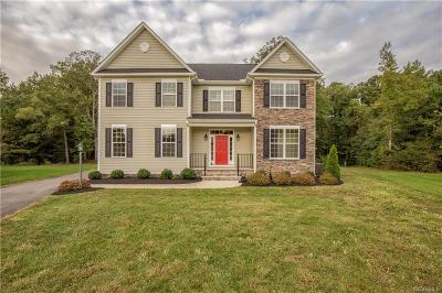 Henrico Single Family Home For Sale: 2906 Ridgewood Park Court