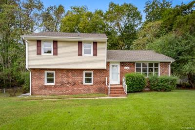South Chesterfield Single Family Home For Sale: 20402 Ravensbourne Drive