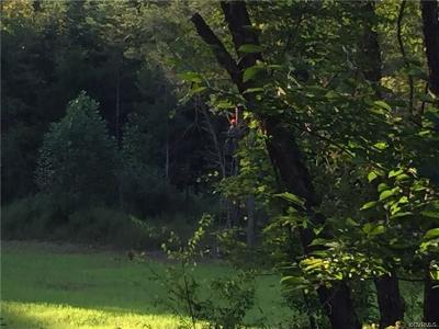Hanover County Residential Lots & Land For Sale: 00 Hopeful Church