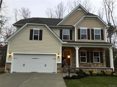Chesterfield Single Family Home For Sale: 6451 Twin Falls Court
