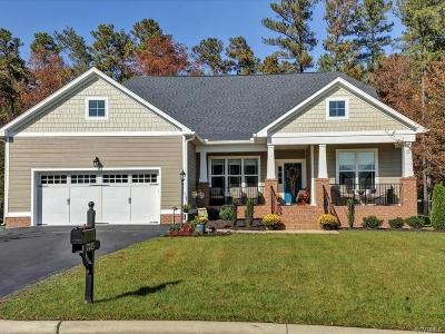 Glen Allen Single Family Home For Sale: 7215 Shenfield Avenue