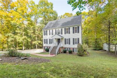 Chesterfield Single Family Home For Sale: 419 Michaux Creek Place