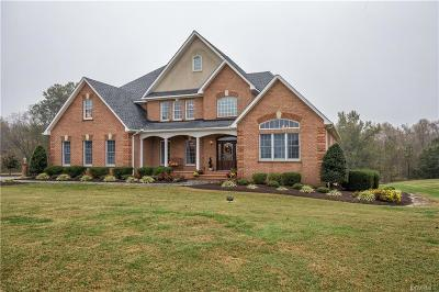 Hopewell Single Family Home For Sale: 9771 Jamescrest Drive