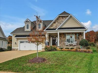 Chesterfield County Single Family Home For Sale: 4242 Heron Pointe Court