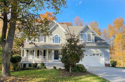 Hanover County Single Family Home For Sale: 11197 Manor View Drive