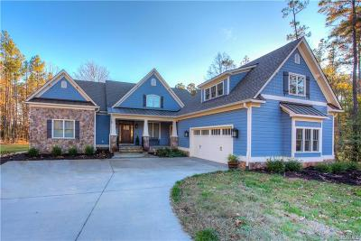 Ashland Single Family Home For Sale: 12501 Trammell Court