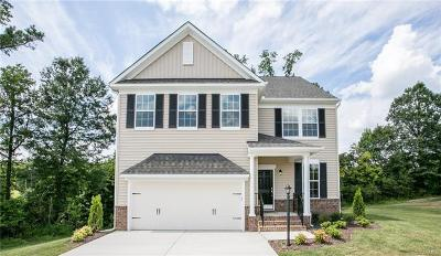 Chesterfield County Single Family Home For Sale: 6437 Richwood Trail