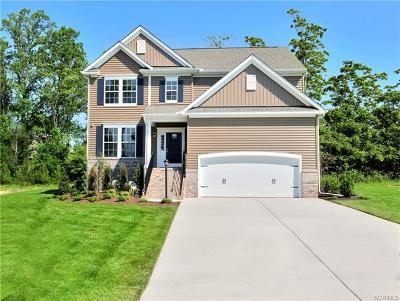 Chesterfield County Single Family Home For Sale: 6413 Richwood Trail