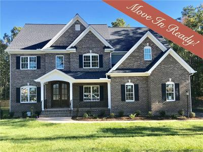 Henrico County Single Family Home For Sale: 11060 Ellis Meadows Lane