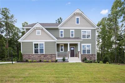 Henrico Single Family Home For Sale: Big Tree Lane