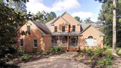 Williamsburg Single Family Home For Sale: 203 Creek Point Circle