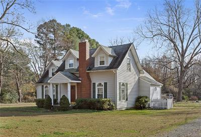 Henrico Single Family Home For Sale: 1161 Berryhill Road