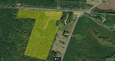 Hanover County Residential Lots & Land For Sale: 17651 Tyler Station Road