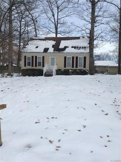 Chesterfield Single Family Home For Sale: 9913 Indian Point Road