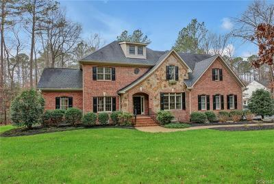 Glen Allen Single Family Home For Sale: 11400 Long Meadow Drive